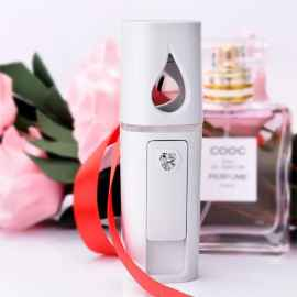 Mini Portable Rechargeable Nano Mister Moisture Spray Negative ion Facial Humidifier atomizer